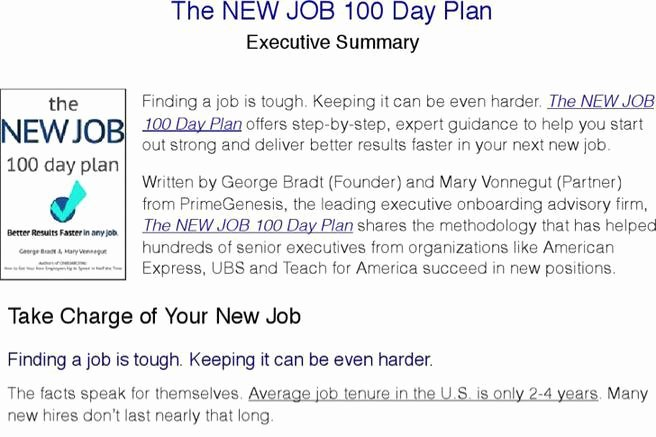 100 Day Plan Template Best Of 4 Sample 100 Day Plan Templates Free Download