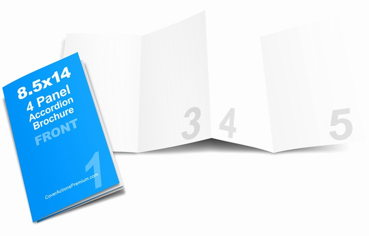 Accordion Fold Brochure Template Luxury Accordion Fold Brochure Mockup 8 5 X 14