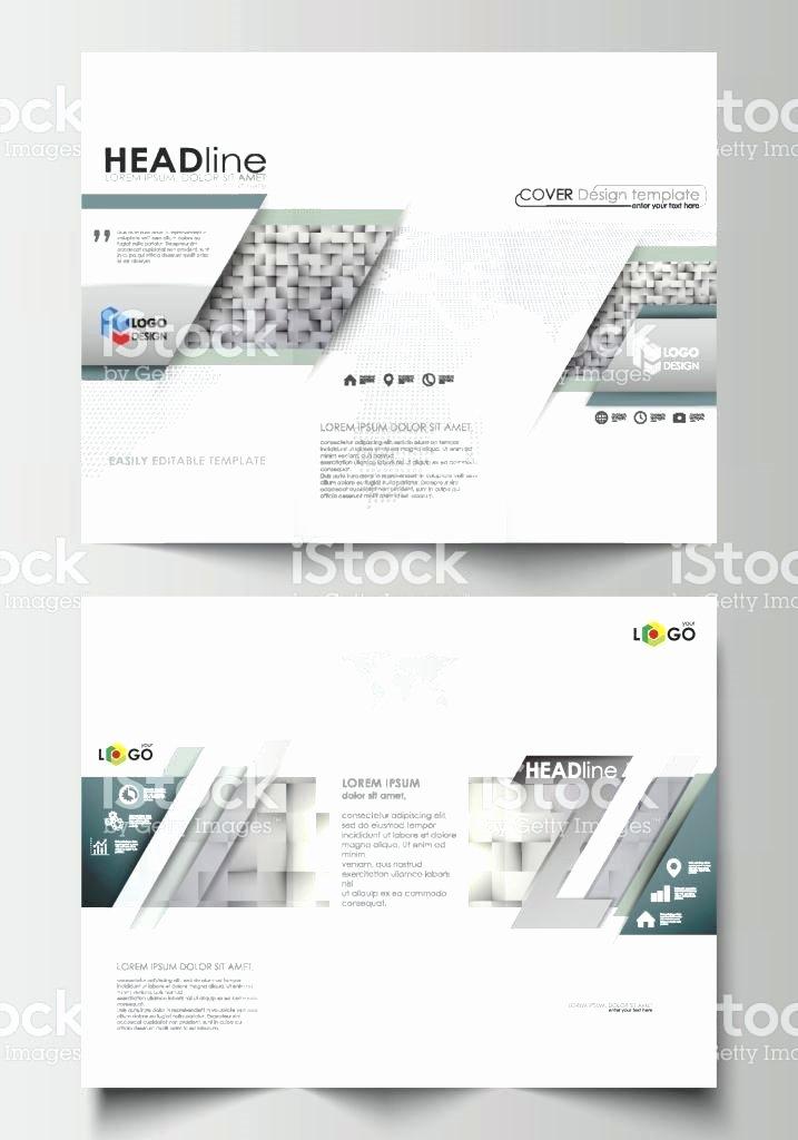 Accordion Fold Brochure Template Unique Z Fold Brochure Template Gate Word Double Accordion Free
