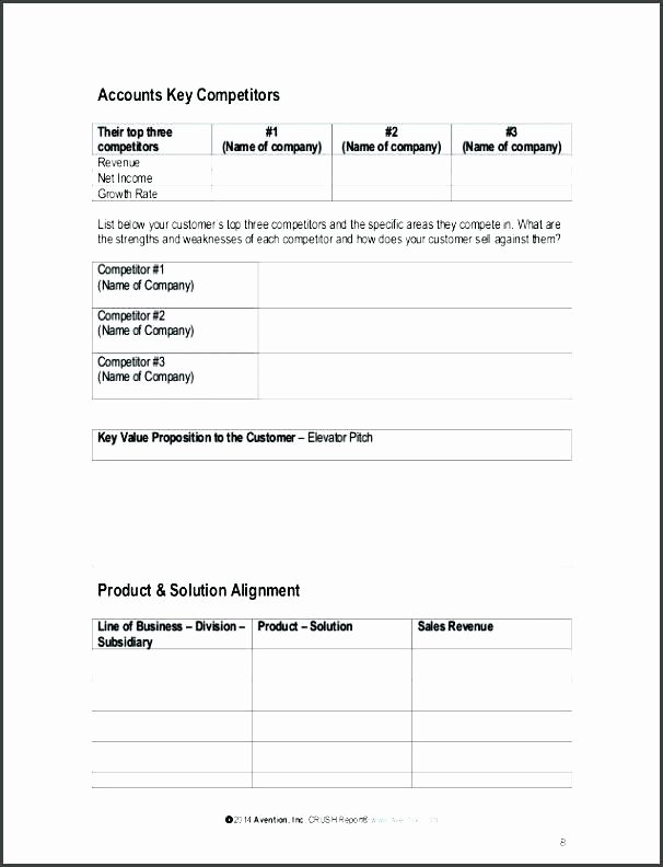 Account Management Plan Template Best Of Account Plan Example Template Development Key Management