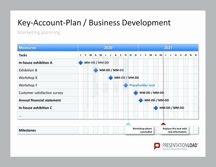 Account Management Plan Template Lovely Key Account Management Plan Business Development Template