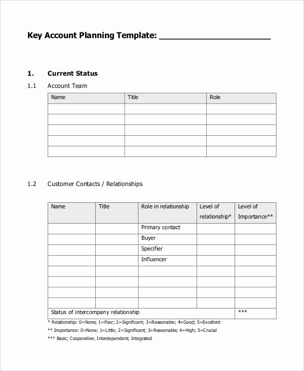 Account Management Plan Template New 7 Strategic Account Plan Templates Free Sample Example