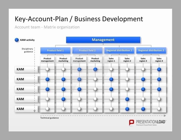 Account Plan Template Ppt Beautiful 17 Images About Key Account Management Powerpoint