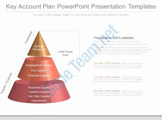 Account Plan Template Ppt Beautiful Custom Key Account Plan Powerpoint Presentation Templates