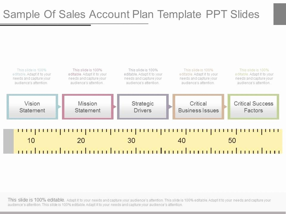 Account Plan Template Ppt Inspirational Strategic Account Plan Powerpoint Slide Deck
