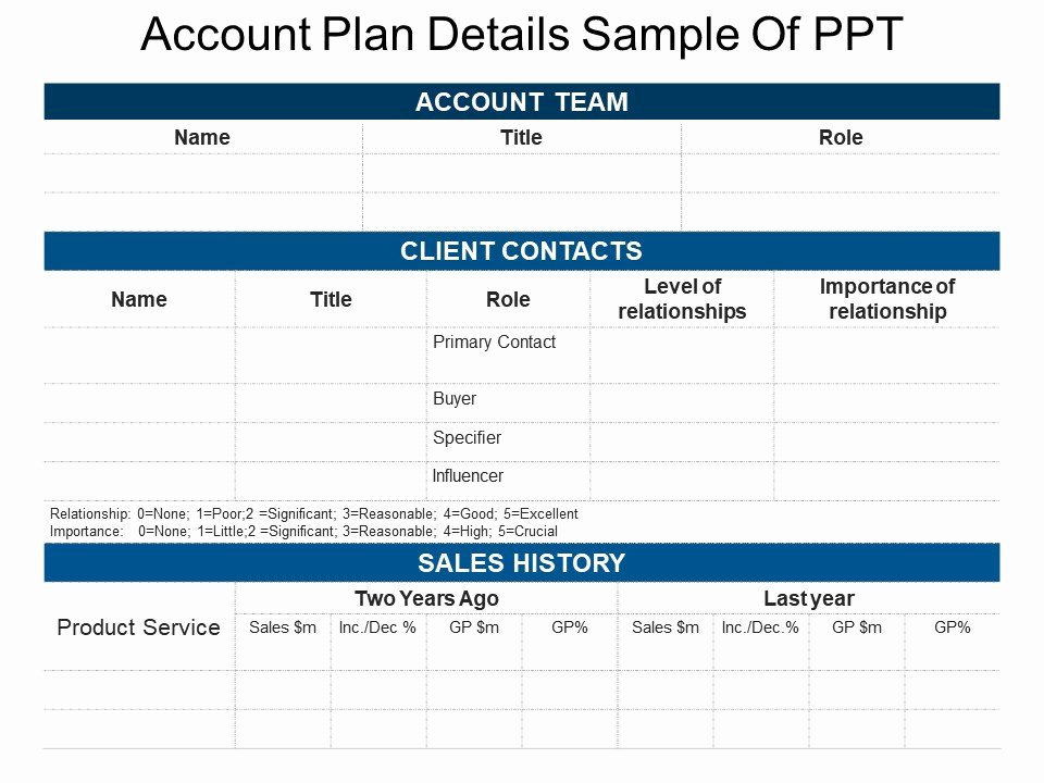 Account Plan Template Ppt Luxury Account Plan Details Sample Ppt