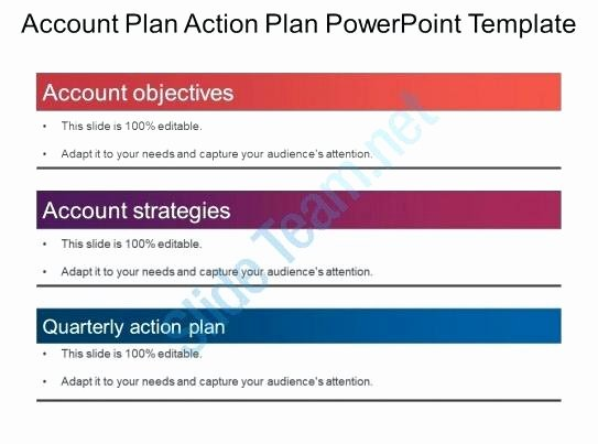 Account Plan Template Ppt Luxury Account Plan Templates Strategic Sales Plan Template