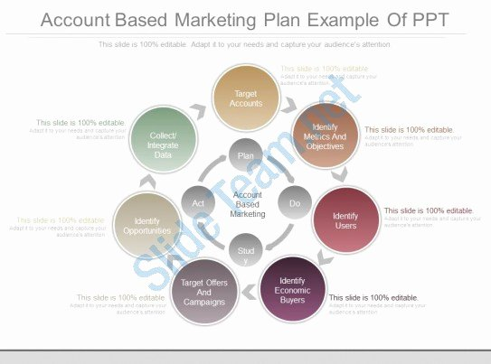 Account Plan Template Ppt Luxury Unique Account Based Marketing Plan Example Ppt