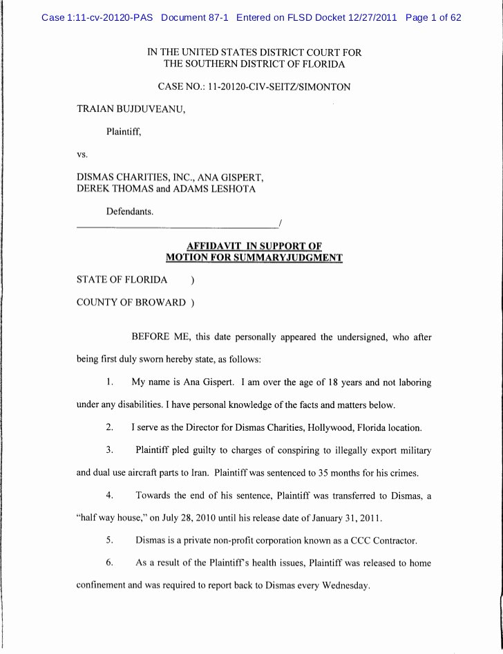 Affidavit Of Support Template Luxury Affidavit In Support Of Motion for Summary Judgment