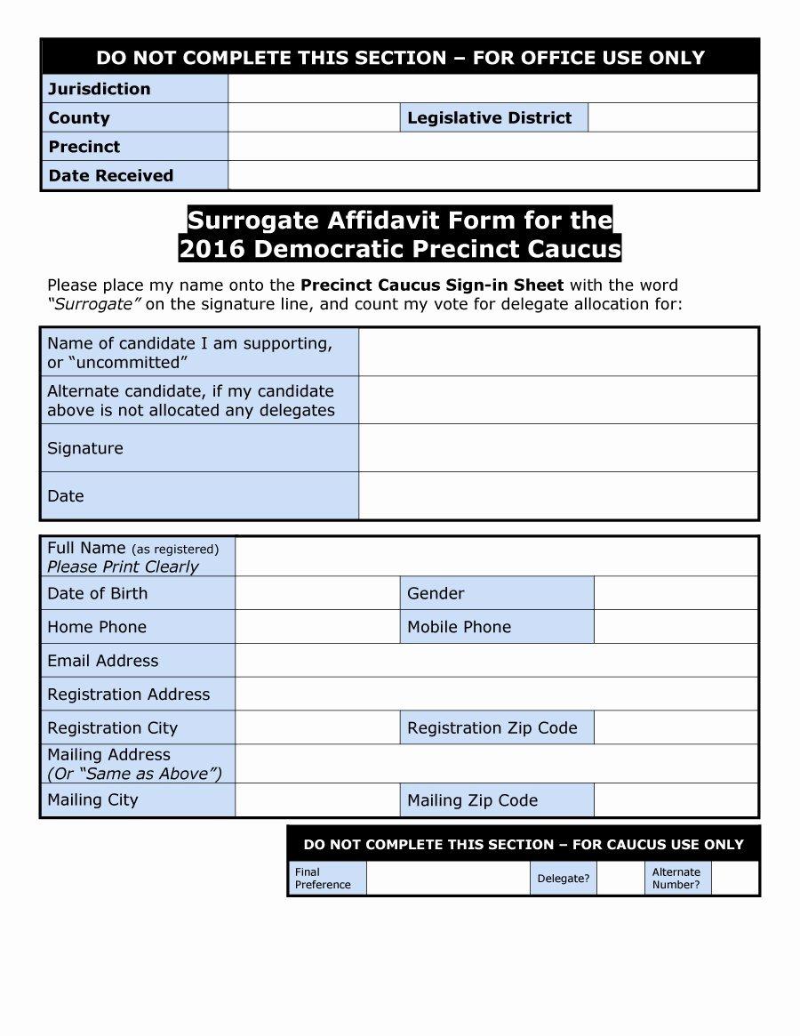 Affidavit Of Support Template Unique 48 Sample Affidavit forms & Templates Affidavit Of