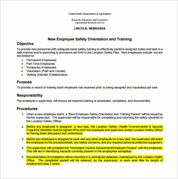 Affirmative Action Plan Template Awesome Affirmative Action Plan Sample Small Business Templates