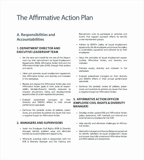 Affirmative Action Plan Template Elegant Word Manual Template Basic and Employment Manuals to