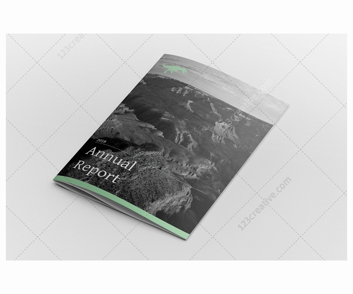 Annual Financial Report Template Lovely Annual Report Design Indesign Template Professional