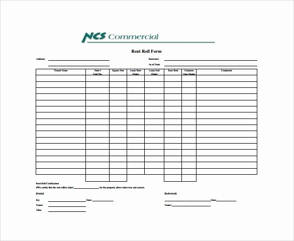 Apartment Rent Roll Template Inspirational 14 Rent Roll form Templates – Pdf Word