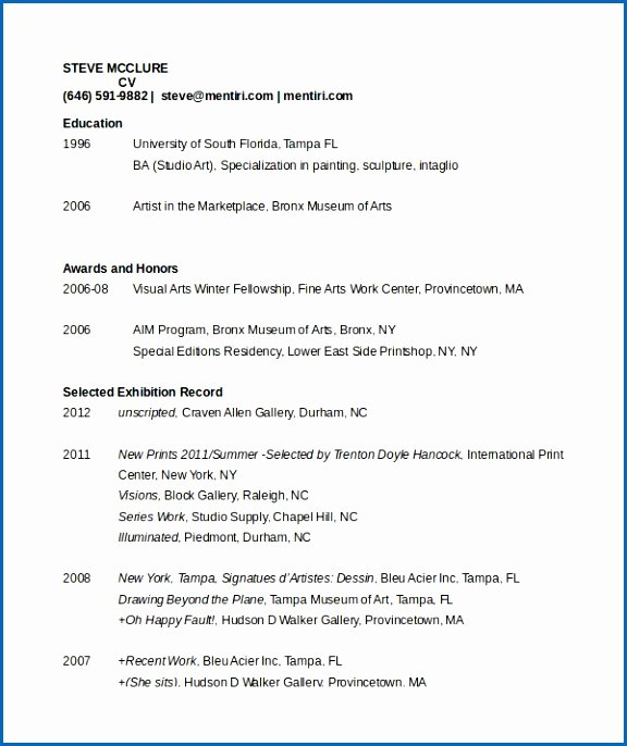 Artist Resume Template Word Awesome 3d Artist Resume Objective Creative Arts and Graphic