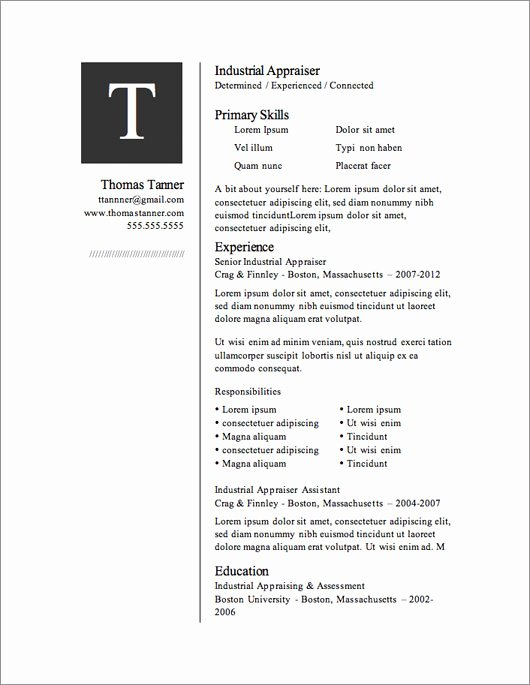 Artist Resume Template Word Lovely 12 Resume Templates for Microsoft Word Free Download