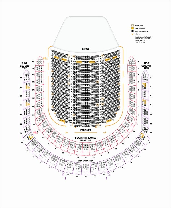 Auditorium Seating Chart Template Lovely 9 Sample Seating Charts