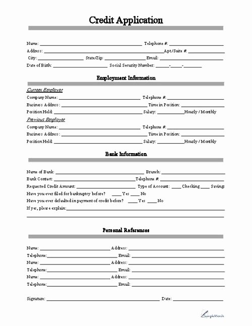 Auto Credit Application Template Awesome Free Printable Business Credit Application form form Generic