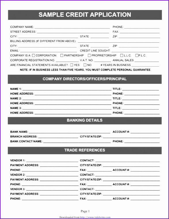 Auto Credit Application Template Lovely Auto Credit Application Template Credit Application form
