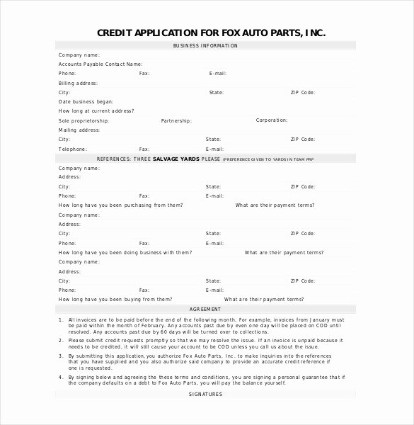Auto Credit Application Template Lovely Credit Application Template 33 Examples In Pdf Word