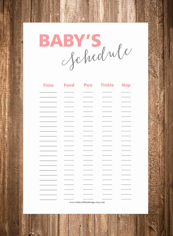 Baby Daily Schedule Template Inspirational 9 Baby Schedule Templates Doc Pdf Psd
