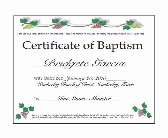 Baptism Certificate Template Word Awesome 20 Baptism Certificates