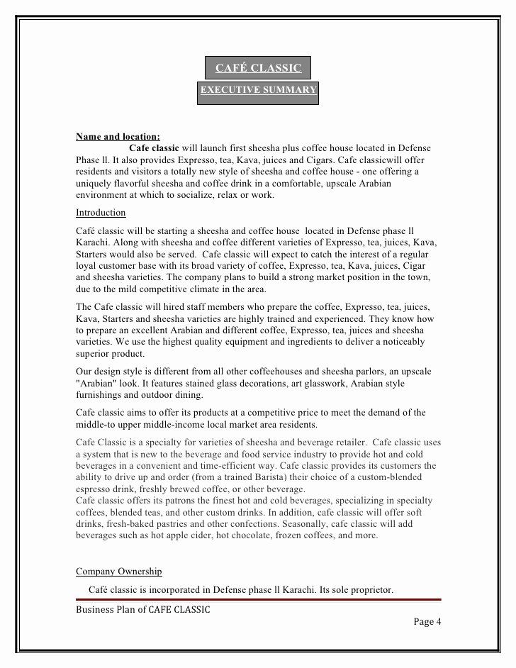 Bar Business Plan Template Best Of Sample Business Plan Template Bar
