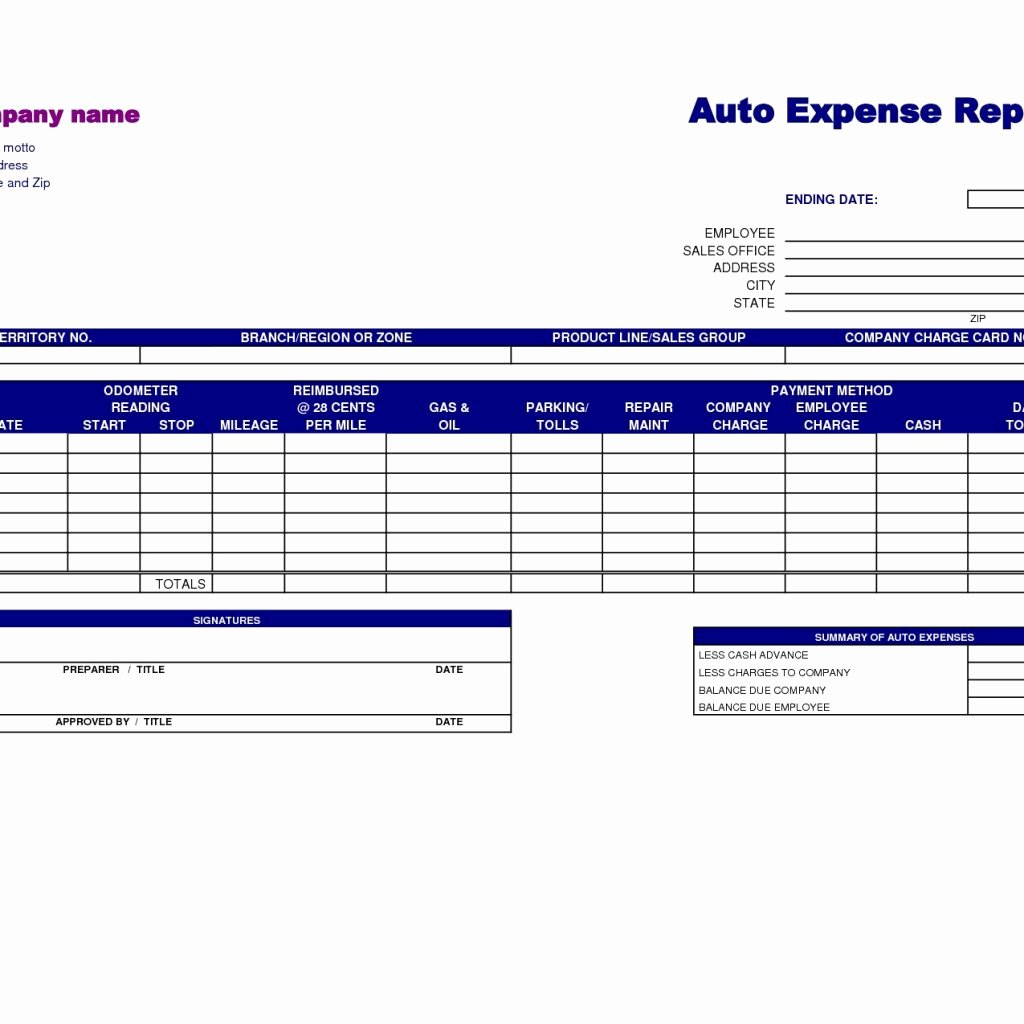 basic report template