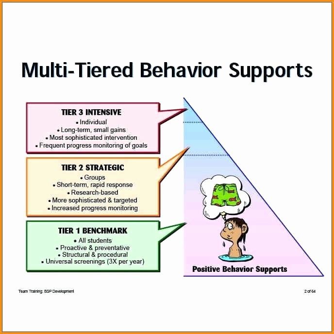 Behavior Support Plan Template Unique Positive Behavior Support Plan Example Image the