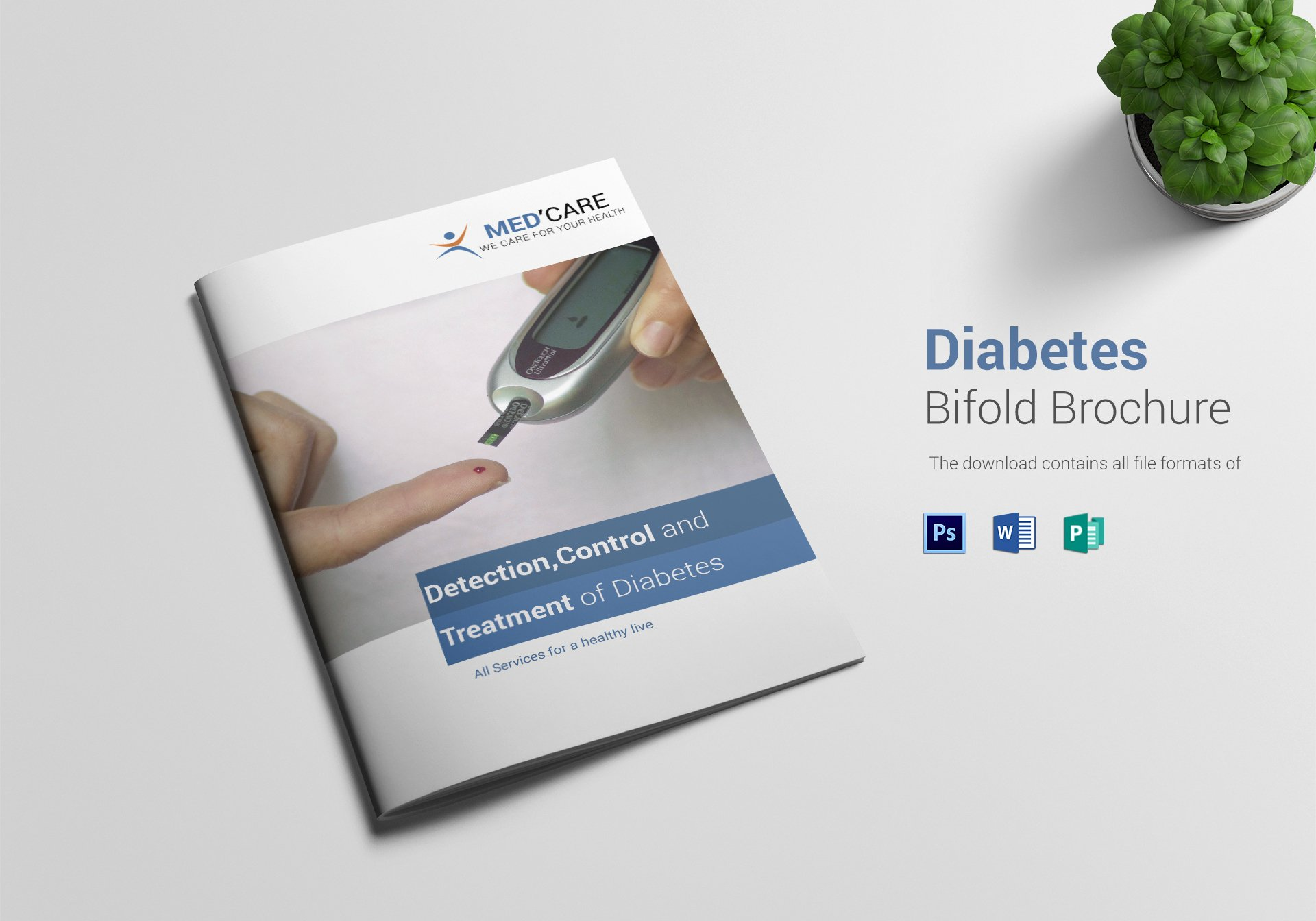 Bi Fold Brochure Template Beautiful Diabetes Bi Fold Brochure Design Template In Word Psd