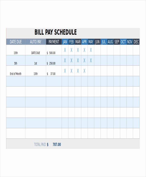 Bill Payment Schedule Template Awesome Bill Payment Schedule Template 12 Free Word Pdf format