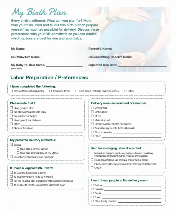 Birth Plan Template Word Beautiful Birth Plan Template 15 Free Word Pdf Documents