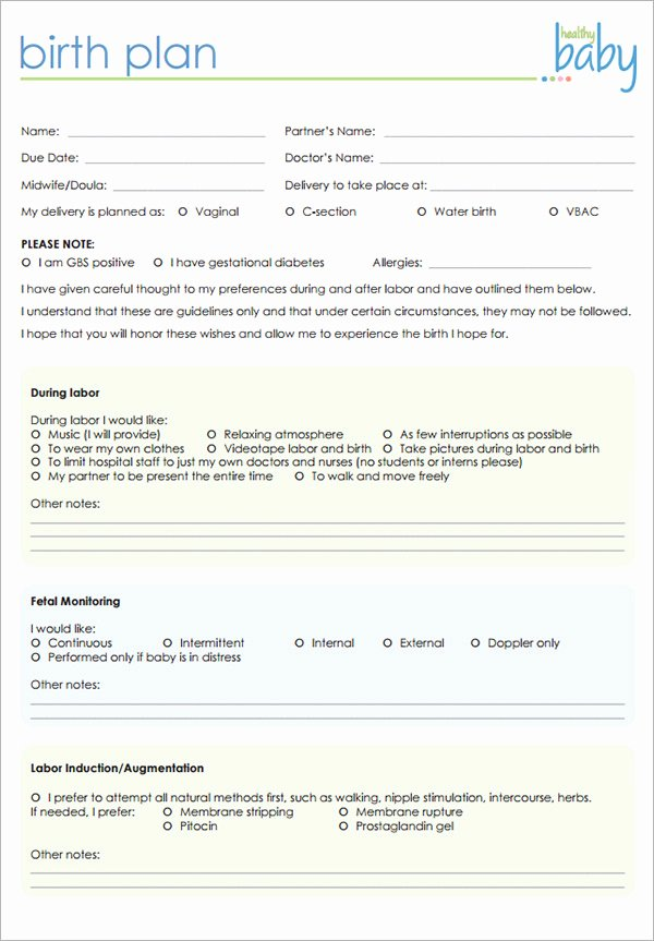 Birth Plan Template Word Elegant 22 Sample Birth Plan Templates – Pdf Word Apple Pages