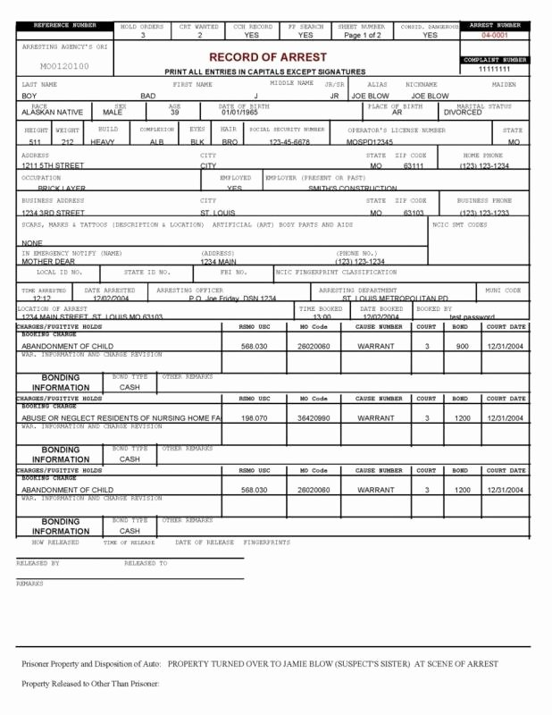 Blank Police Report Template Unique Police Report Example