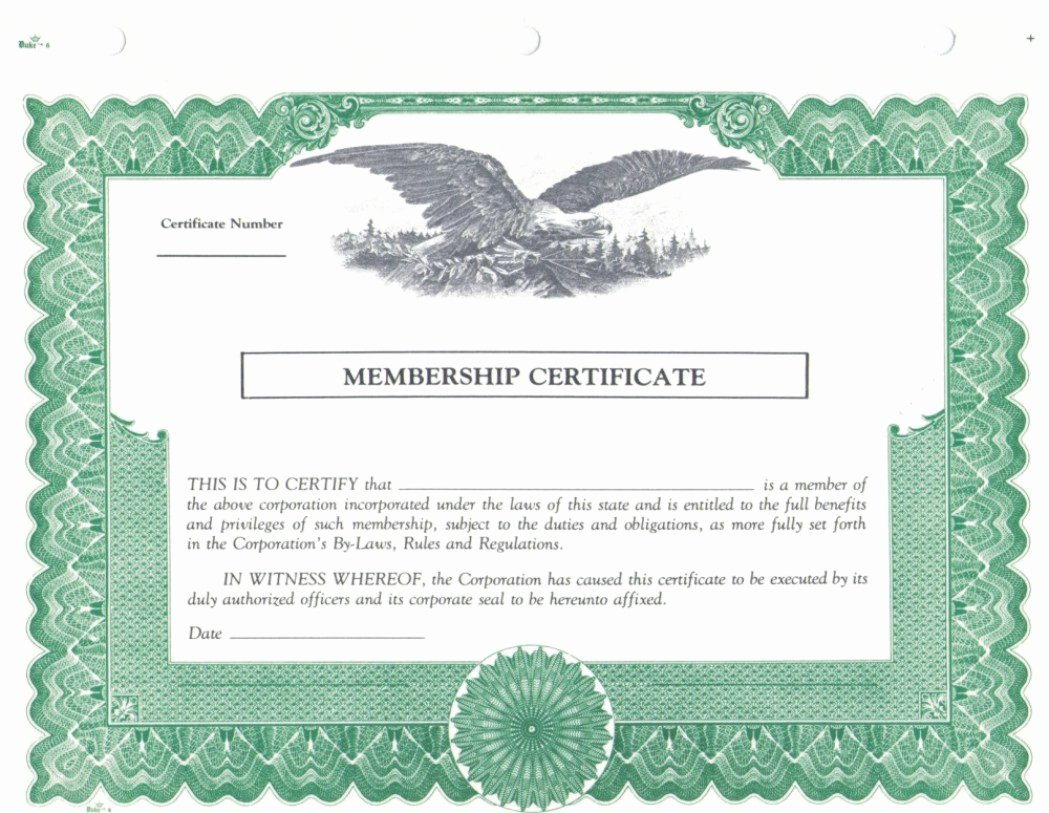 Blank Stock Certificate Template Inspirational Duke 6 Membership Stock Certificates