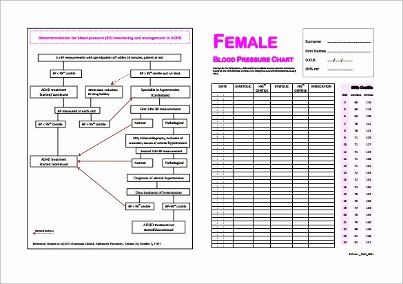 Blood Pressure Charting Template Luxury Blood Pressure Chart Template 13 Free Excel Pdf Word