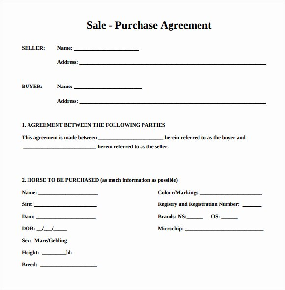 Boat Purchase Agreement Template Inspirational Bill Sale Horse