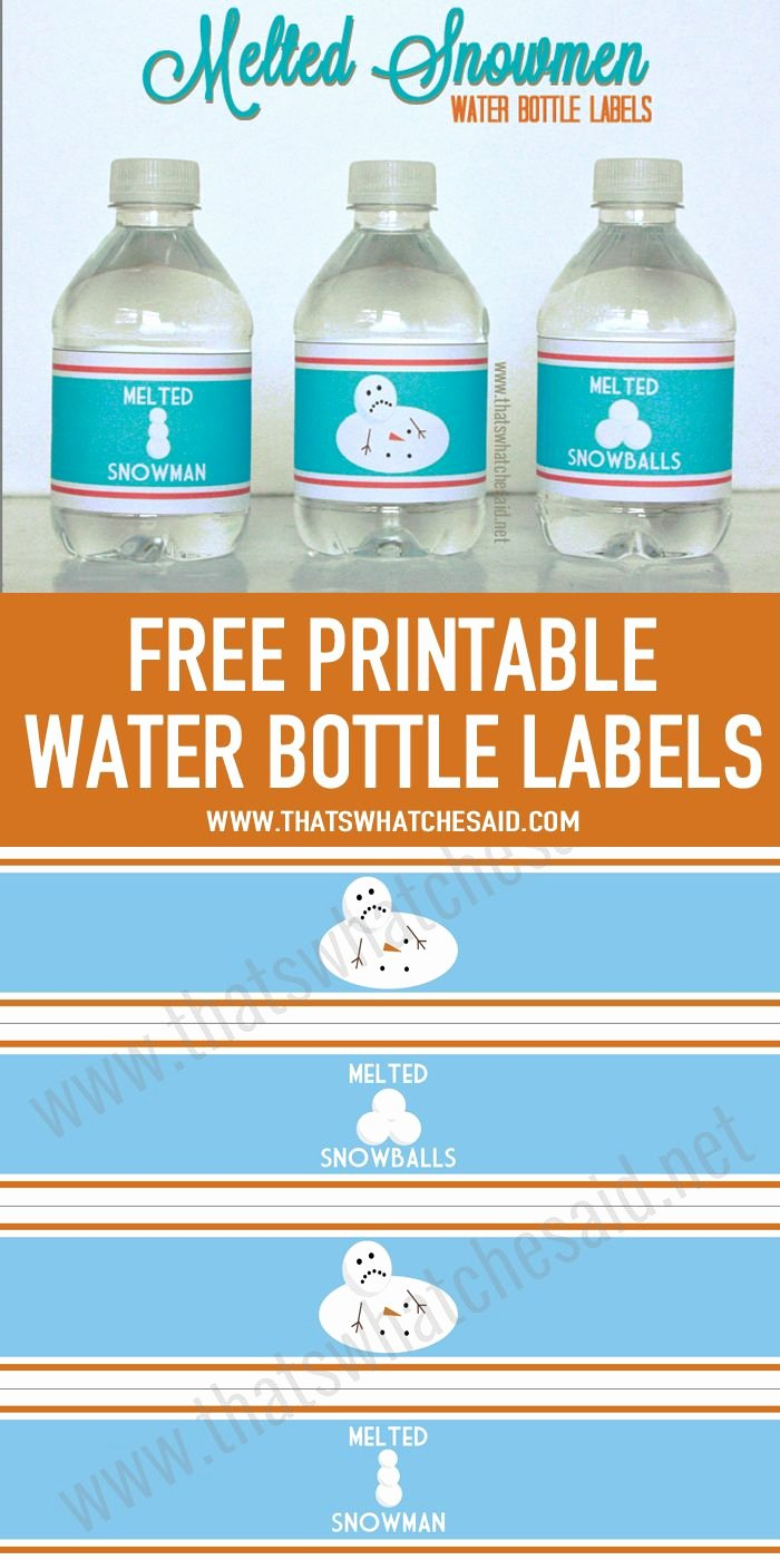 Bottle Label Template Free New 25 Best Ideas About Melted Snowman On Pinterest