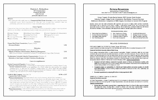 Business Analyst Resume Template Beautiful Business Analyst Resume Example