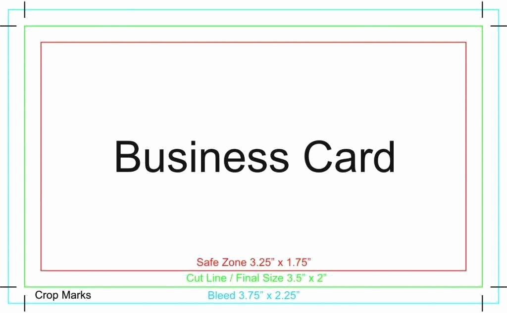 Business Card Illustrator Template Best Of How to Make A Business Card Illustrator Choice Image