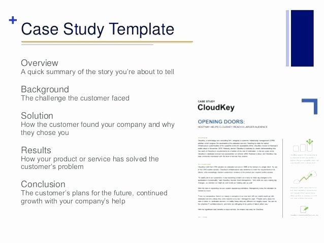 Business Case Analysis Template Elegant Case Study Template