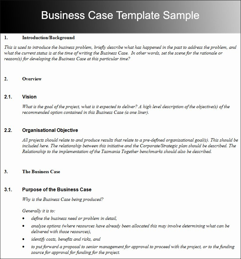 Business Case Template Word Beautiful Business Case Proposal Template Effective Business Case