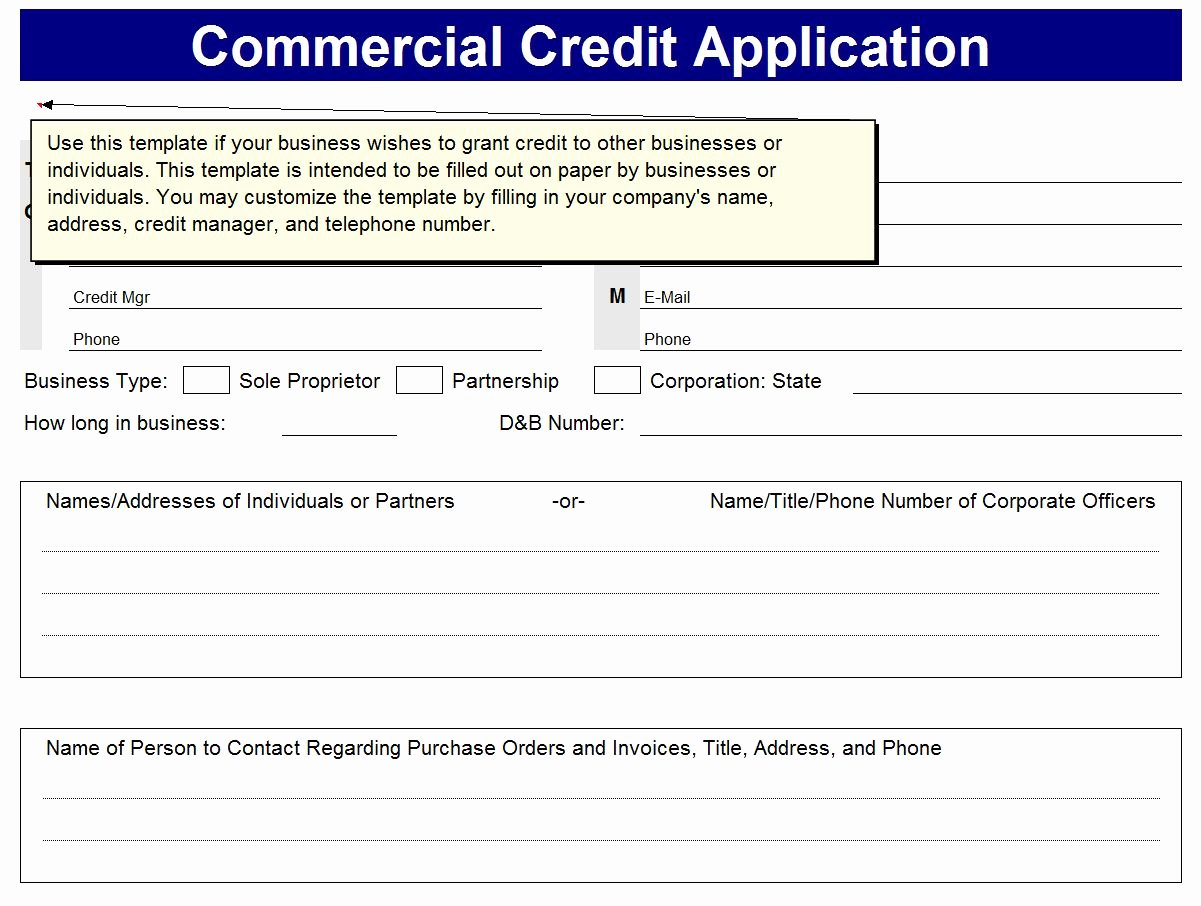 Business Credit Application Template Beautiful Business Excel Templates