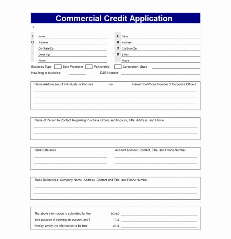 Business Credit Application Template Inspirational Credit Application Template