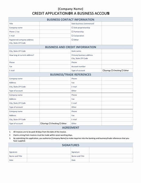 Business Credit Application Template New Financial Management Fice