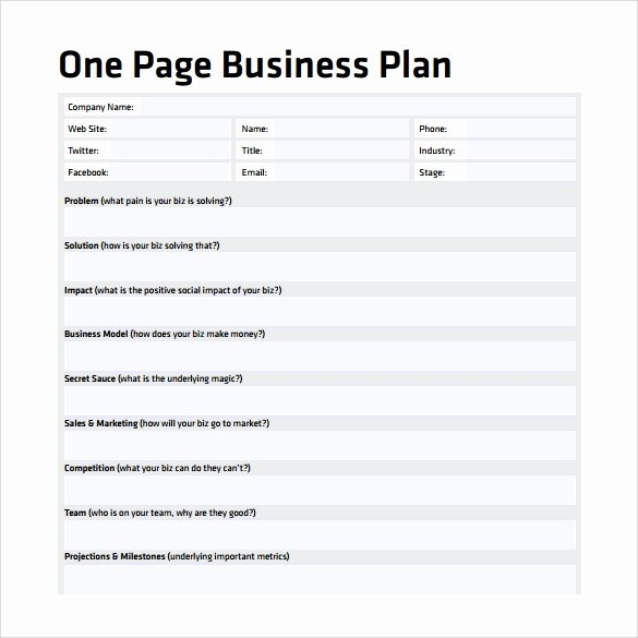 Business One Sheet Template Lovely 10 E Page Business Plan Samples