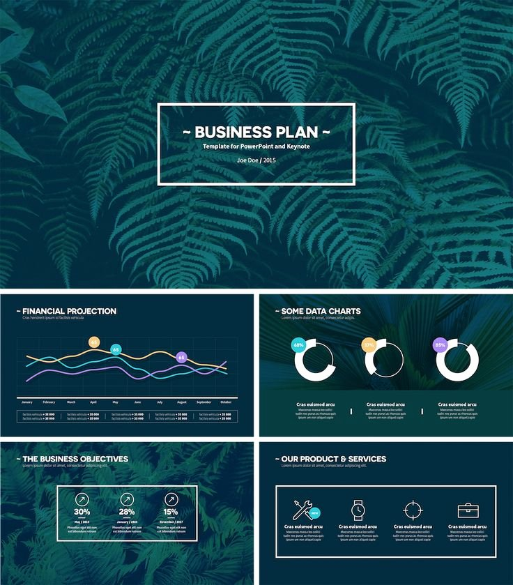 Business Plan Template Powerpoint Best Of 25 Best Ideas About Business Plan Presentation On