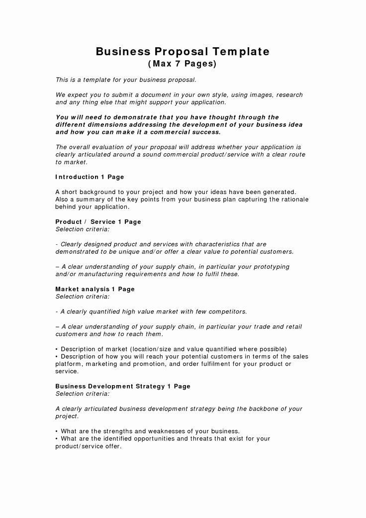 Business Proposal Template Pdf Beautiful Business Proposal Templates Examples