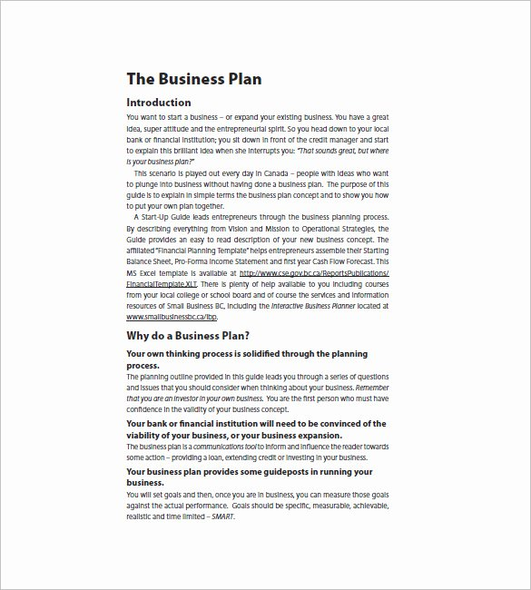 Business Proposal Template Pdf Best Of Startup Business Plan Template 19 Word Excel Pdf