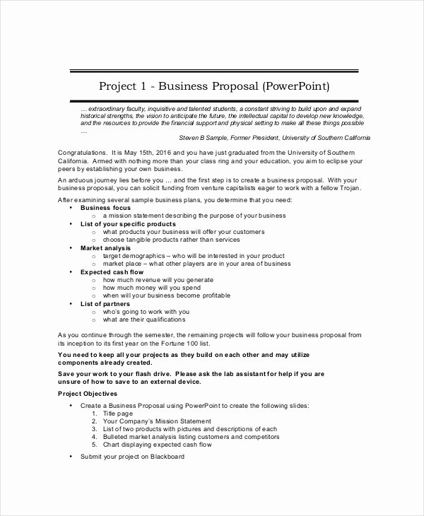 Business Proposal Template Pdf New Business Proposal Template